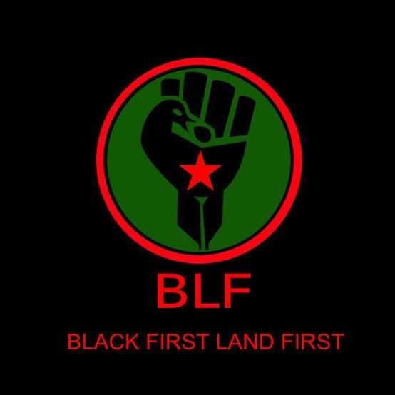 Black First Land First (BLF)  Thumb Image