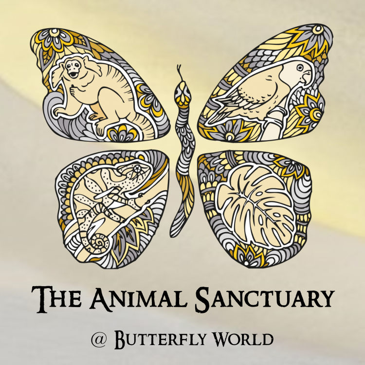 The Animal Sanctuary @ Butterfly World Logo