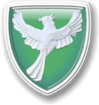 Greenfield Girls' Primary School Cause Logo