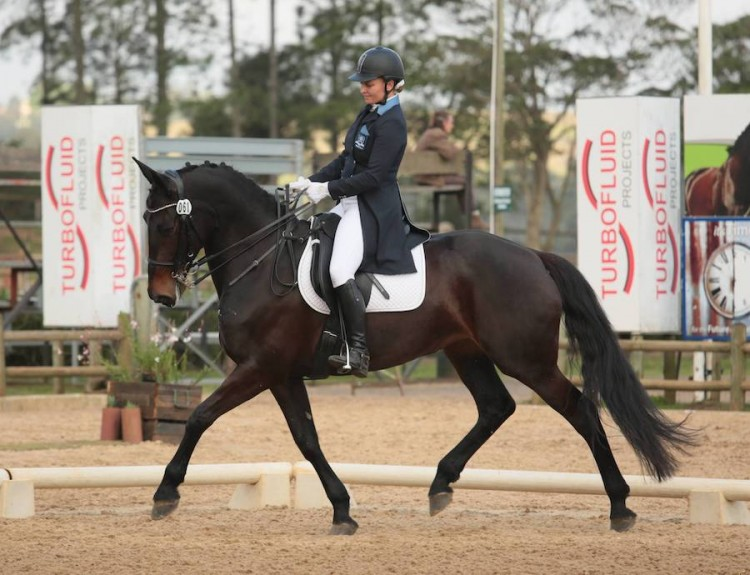 DRESSAGE with DOMINAS Thumb Image