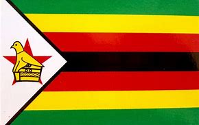 Zimbabwe Support Cause Logo