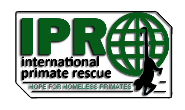 International Primate Rescue Thumb Image