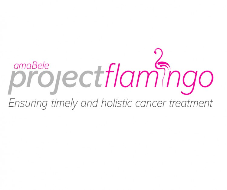 Project Flamingo Logo