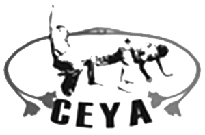 Capoeira Educational Youth Association Thumb Image