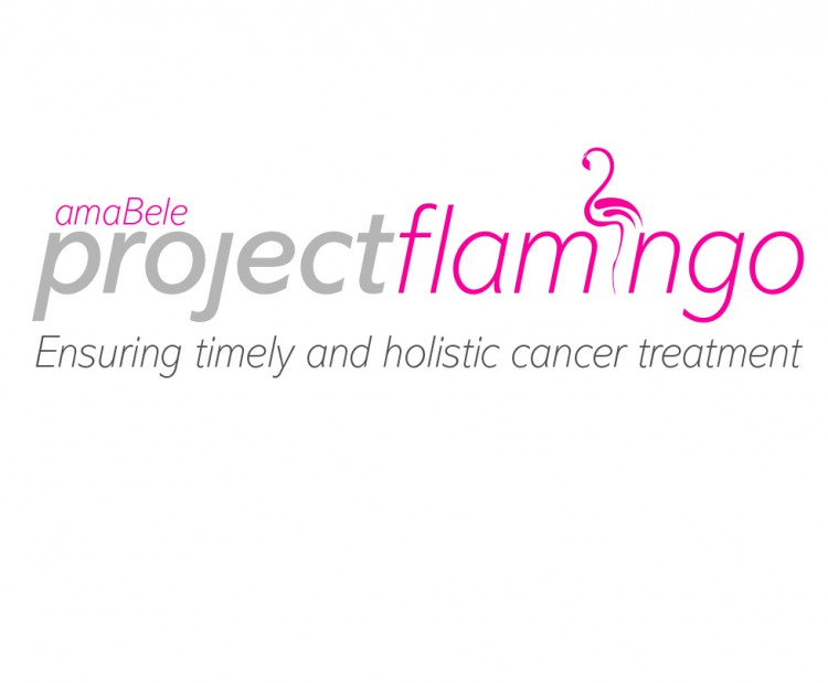 Project Flamingo Student Initiative Logo