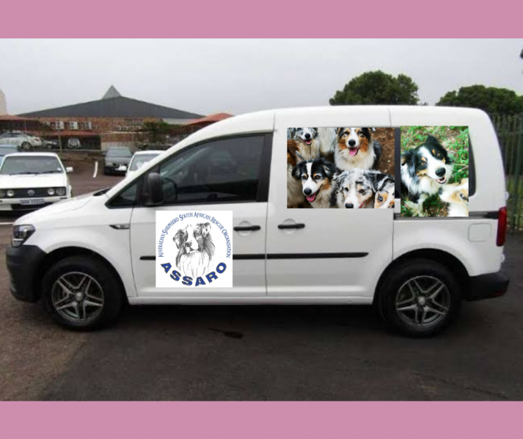 A New Vehicle for Australian Shepherd Rescue Dogs