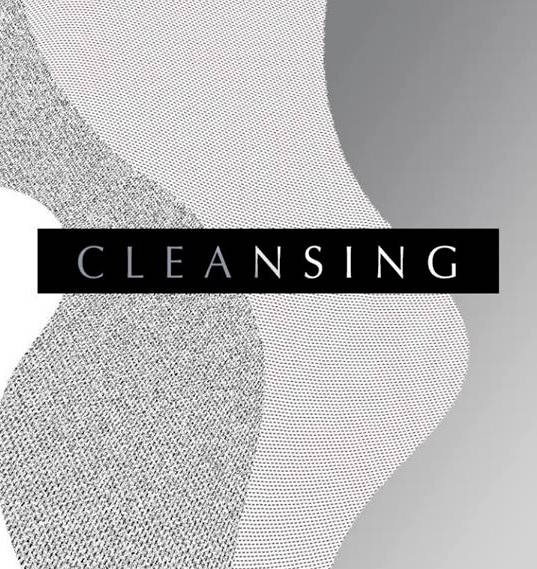 'Cleansing' Experimental Film Fundraiser