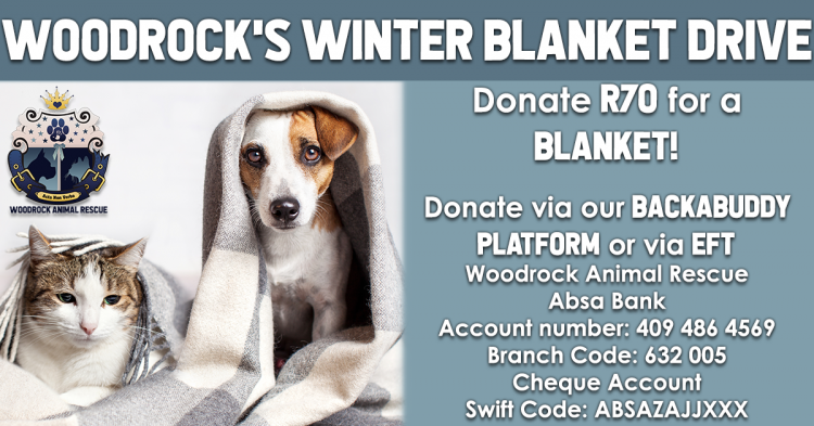 Woodrock Animal Rescue's 2019 Blanket Drive