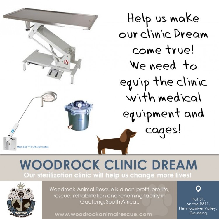 Woodrock Animal Rescue Clinic Dream - Phase2  #woodrockclinicdream
