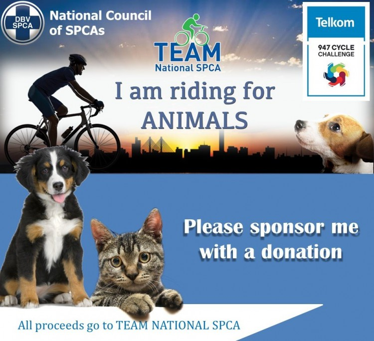 Evadnee's 947 for National Council of SPCA's